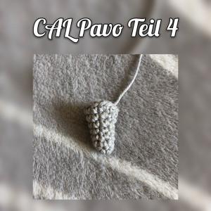 CAL Pavo Teil 4