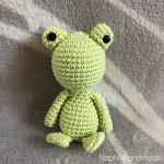 Mini Frosch