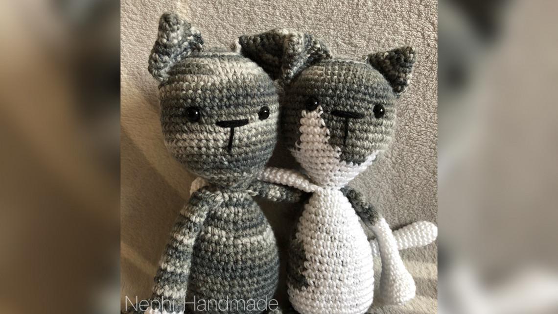 Freundschaft zweier Katzen