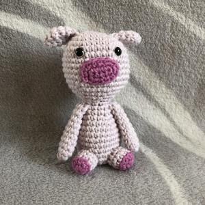 Mini Schweinchen